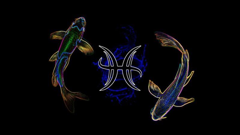 kamen-ryby-1